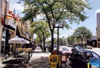 pic of downtown, taken from ci.royal-oak.mi.us-about-downtown