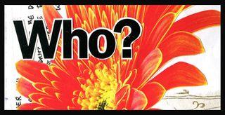 Orange flower WHO?