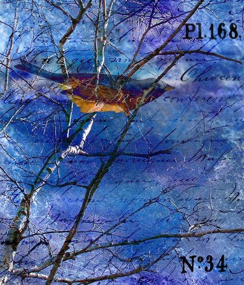 Blue digital collage